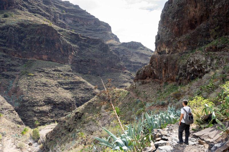 Read more about the article La Gomera Wanderung #1: Die Imada Schlucht