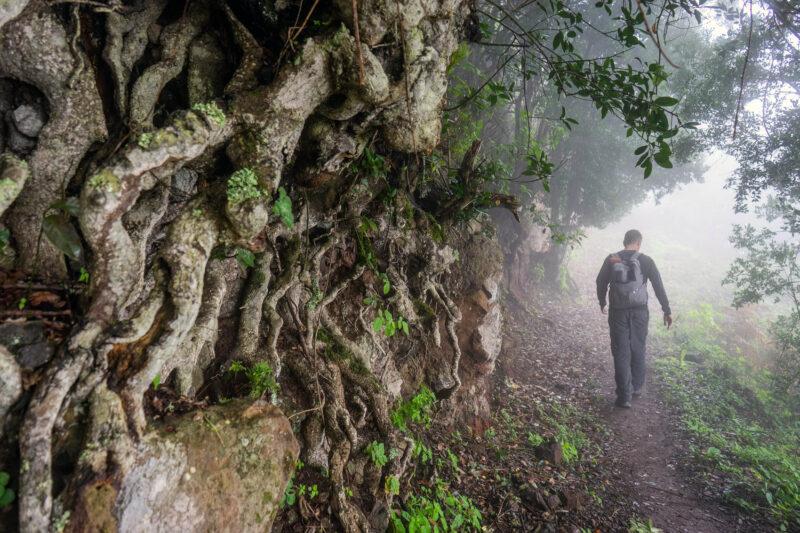Read more about the article La Gomera Wanderung #5: Vallehermoso