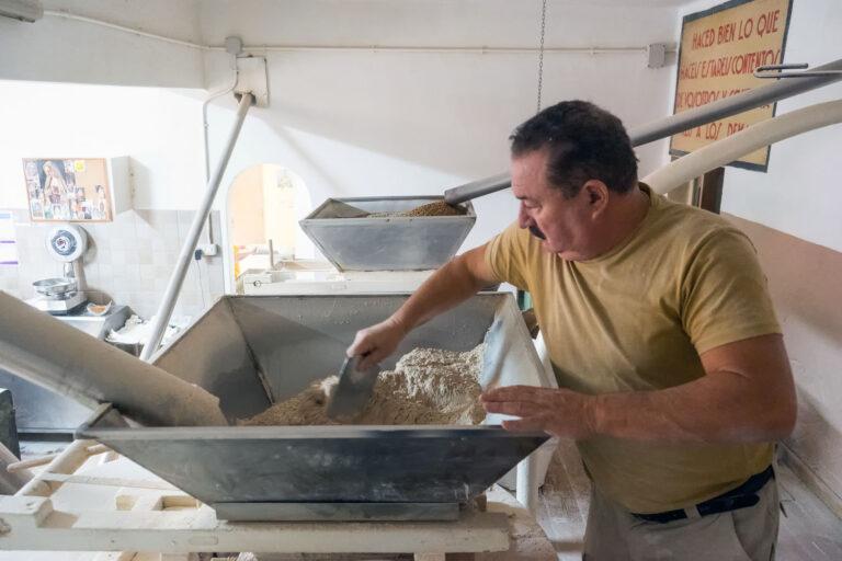 Read more about the article Gofio: Superfood aus den Kanaren